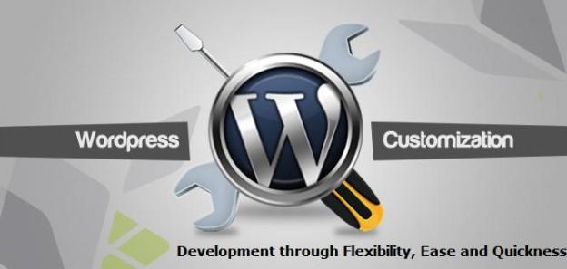 Wordpress Customization Services