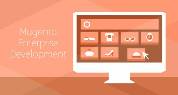 Magento Entreprise Development